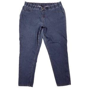Lane Bryant Jeans - Lane Bryant Skinny Jean Jeggings